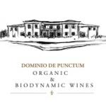 Dominio De Punctum, S.L.