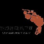 Sogrape Chile